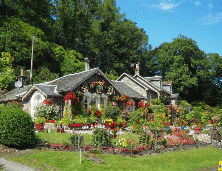 Qual è la migliore bordura da giardino?