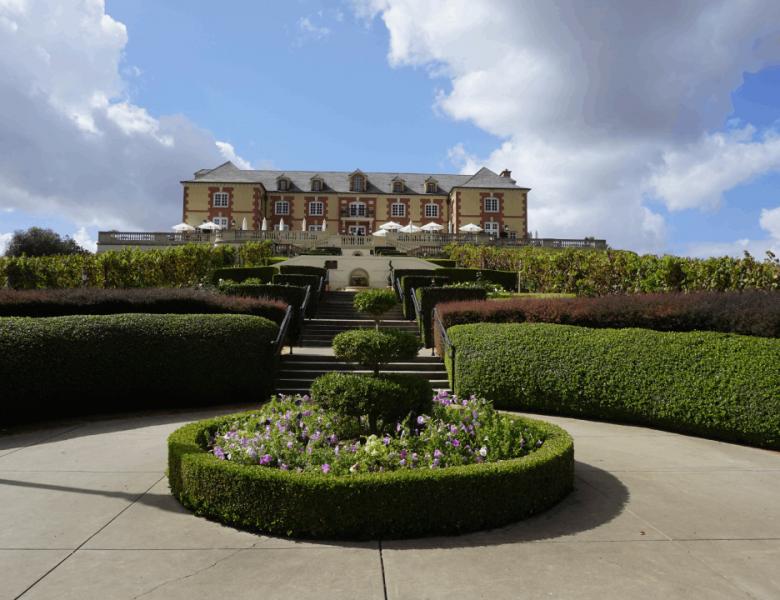 I 3 migliori tagliasiepi termici per spazi verdi bellissimi