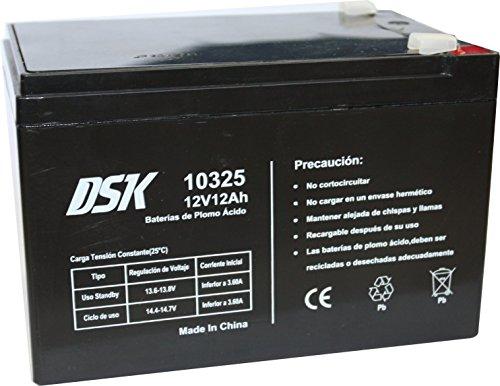 DSK, batterie au plomb 12V 12 Ah,...
