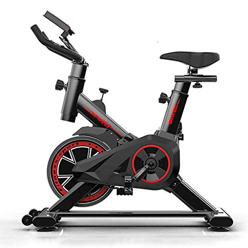 RLF LF Exercise Bike for the Home...