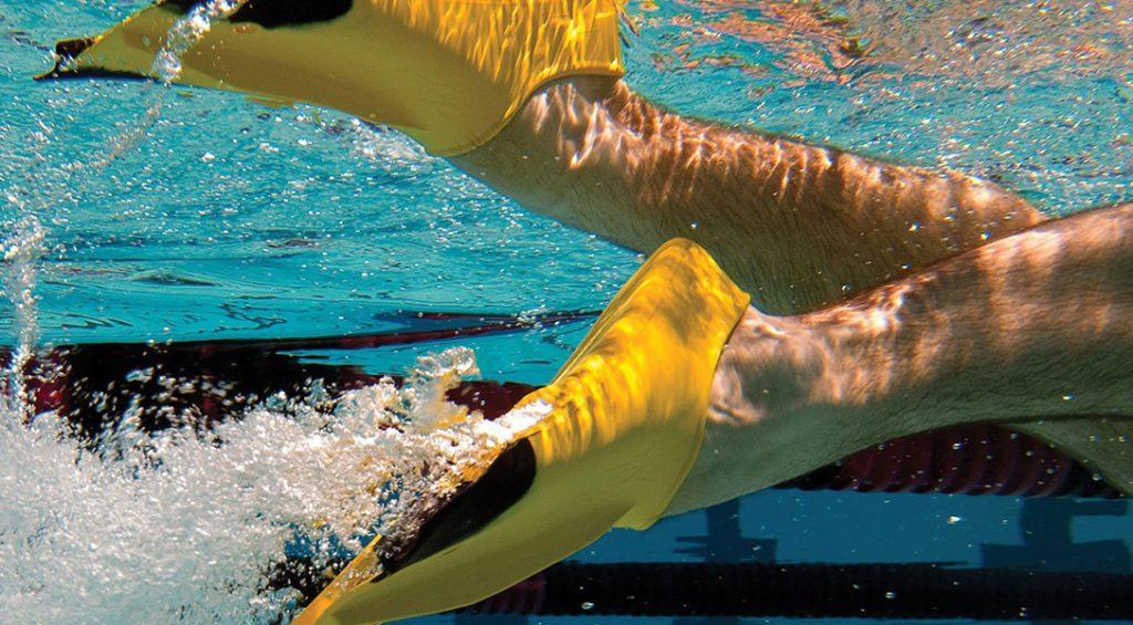 Les 6 meilleures nageuses