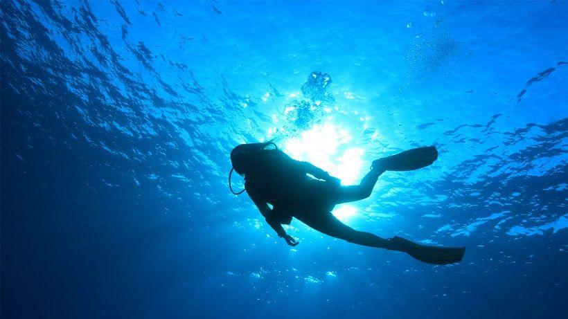 Top 5 des combinaisons de plongée pour se réchauffer en profondeur