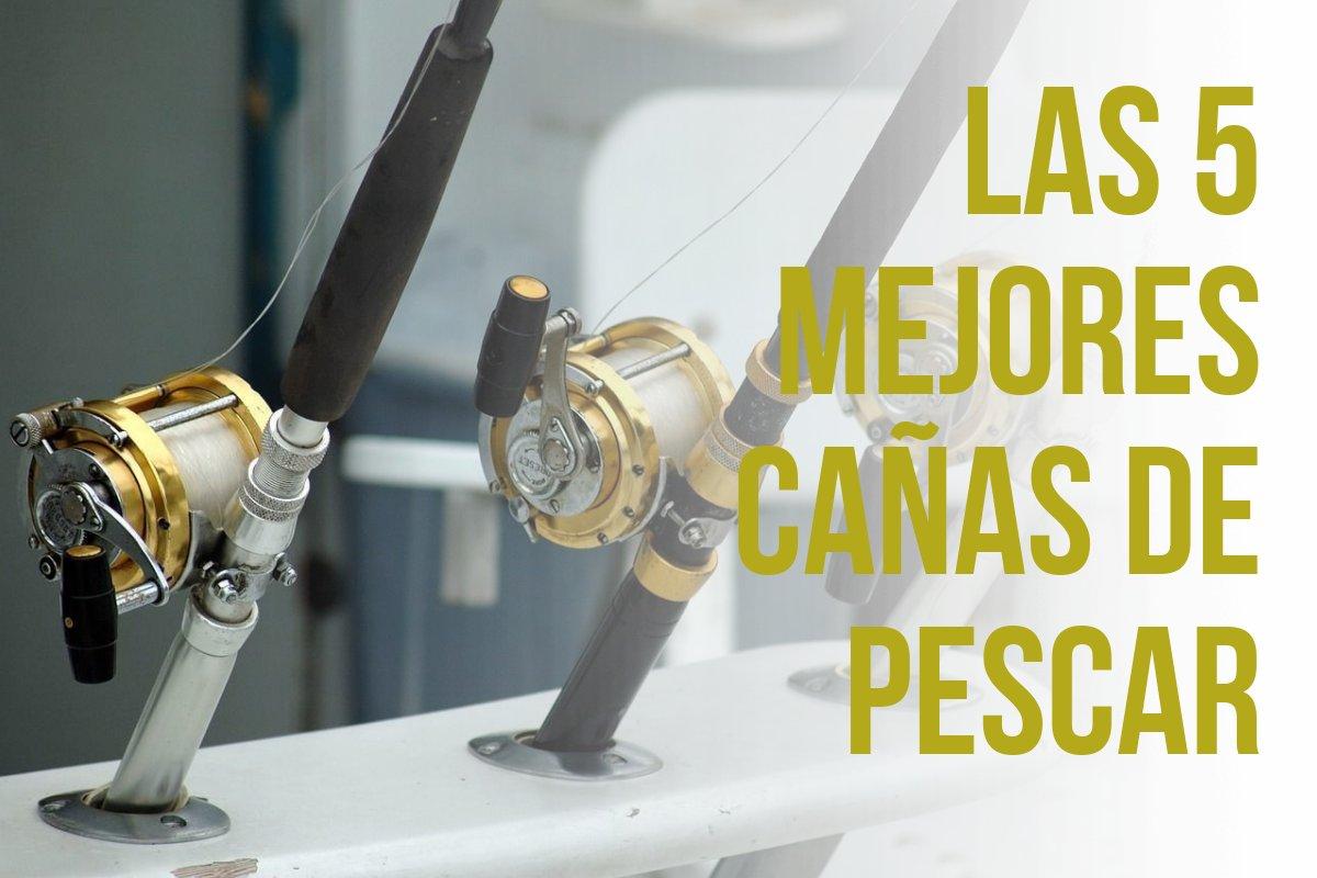 Top 5 des cannes à pêche qui correspondent à votre style de pêche