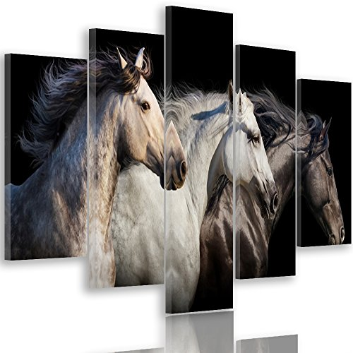 Feeby Frames, Image sur toile - 5...