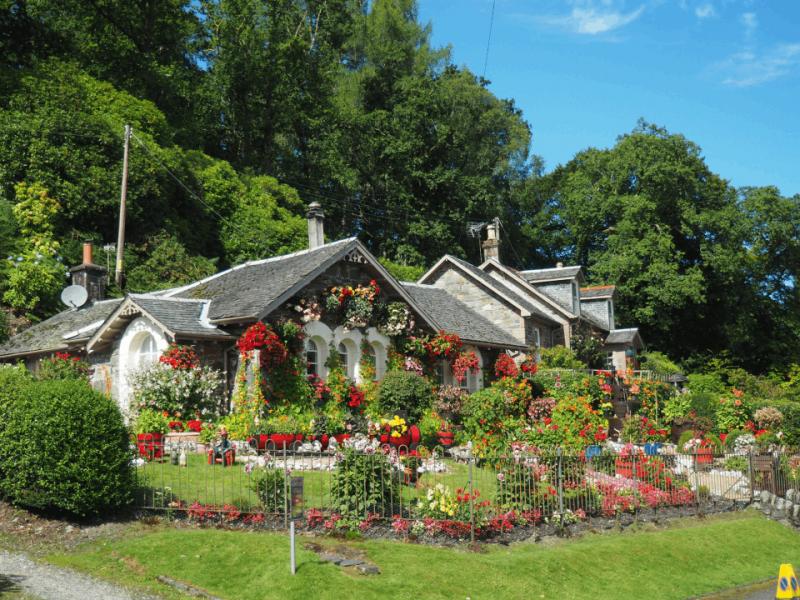Quelle est la meilleure bordure pour jardin ?